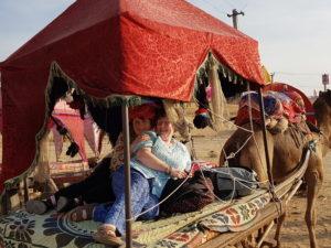 dharma-camel-safari